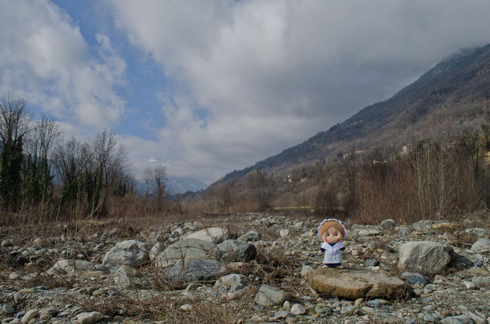 Sulle rive del Pellice e, dietro di me, i prati dov'era cresciuta la quercia