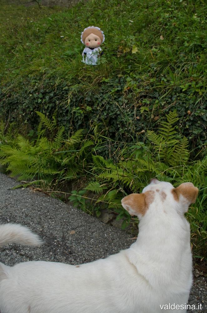 Ehi, cagnolino... La conoscevi anche tu questa leggenda?