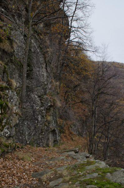 La mulattiera che costeggia le Rocciaglie è detto anche Sentiero Neolitico, poiché si possono trovare un sacco di antichissime incisioni rupestri!